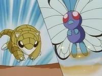 EP008 Sandshrew vs Butterfree.jpg