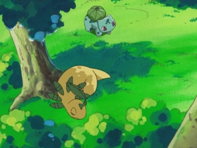 EH14 Bayleef y Bulbasaur de Ash.jpg
