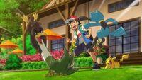 EP1116 Farfetch'd de Galar de Ash tiene una gran rivalidad con Riolu de Ash