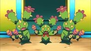 ¡El trío de Maractus! Pokémon Negro y Blanco Destinos rivales
