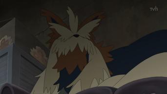 Stoutland (anime)
