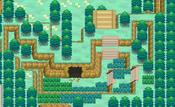 Boquete Gigante (bosque) N2B2