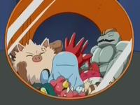EP264 Pokémon capturados (2).png