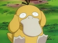 EP049 Psyduck.png