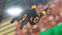 EP1074 Umbreon usando Cola férrea