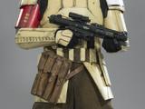 Soldado de asalto de defensa costera