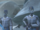 Guardia pantorana