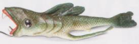 Hyacander de doble aleta