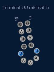 Terminal Mismatch.jpg