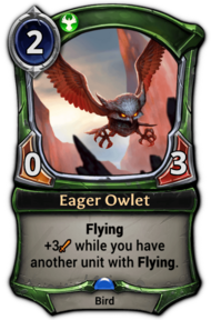 Eager Owlet.png
