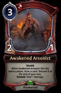 Awakened Arsonist - 1.53.1.8071c