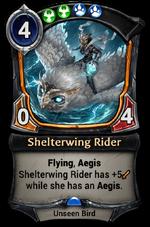 Shelterwing Rider