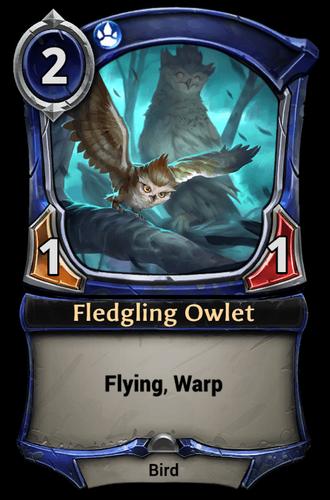 Fledgling Owlet card