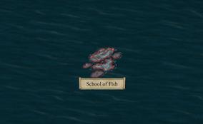 PE2 School of Fish.png