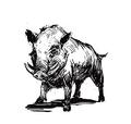 Bestiary boar.png