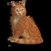 Poe2 pet backer cat Ginger Demon icon.png