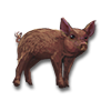 Poe2 pet backer pig Rare Dan icon.png