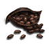 Cocoa icon.png