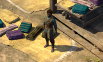 PE2 Well-traveled Supplier.png