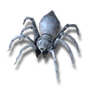 Pet tiny spider icon.png