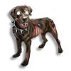 Poe2 pet grave hound icon.png