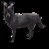 Poe2 pet backer dog Sheba icon.png