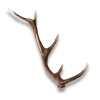 Poe2 stag horn icon.png