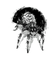 Bestiary moon spider.png