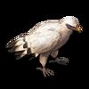 Poe2 pet white bird icon.png