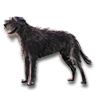 Poe2 pet backer dog Eviee icon.png