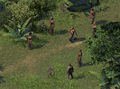 PE2 Bent Bough Forest Forest.png