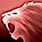 Spiritshift cat icon.png