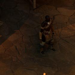 Arena Warden