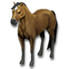 Pet horse icon.png