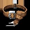 Poe2 belt girdle eoton icon.png