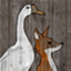 StoreSign goose and fox.png
