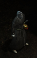 Helig of Thein PoE NPC Undead Wizard.png
