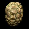Poe2 shield medium shell icon.png
