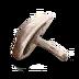 Dyrcap icon.png