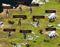 Quest bounty sserkal lineup.jpg