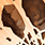 Twin stones icon.png