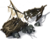 Icon Shipwreck.png