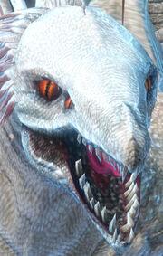 Alpine dragon.jpg