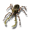 Pet tiny beetle icon.png