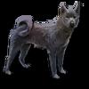 Poe2 pet backer dog Algol icon.png