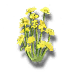 Golden celery icon.png