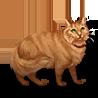 Pet orange cat icon.png