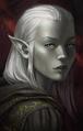 Elf female PoE1 portrait 3 lg.png