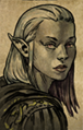 Female Elf D Convo.png