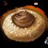 Darkest Rauatai Cookies
